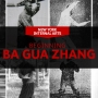 NEW 2017  Ba Gua Zhang Classes in NYC!