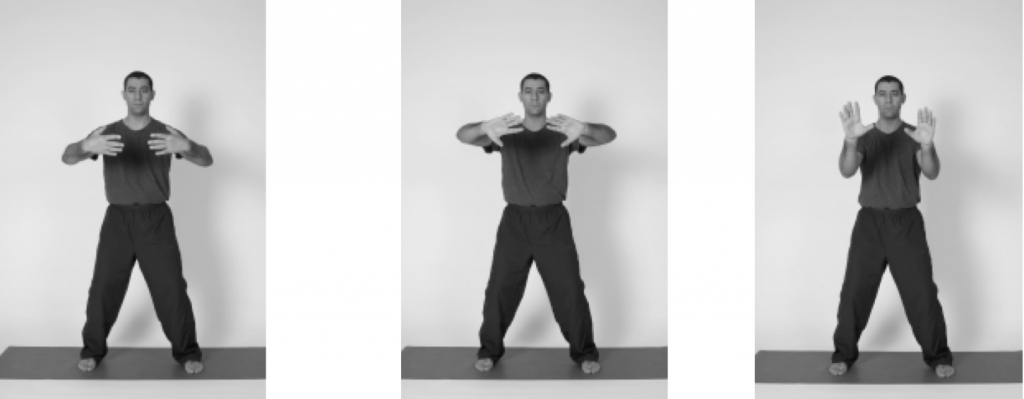 Five Element Qi Gong - 4 Posts