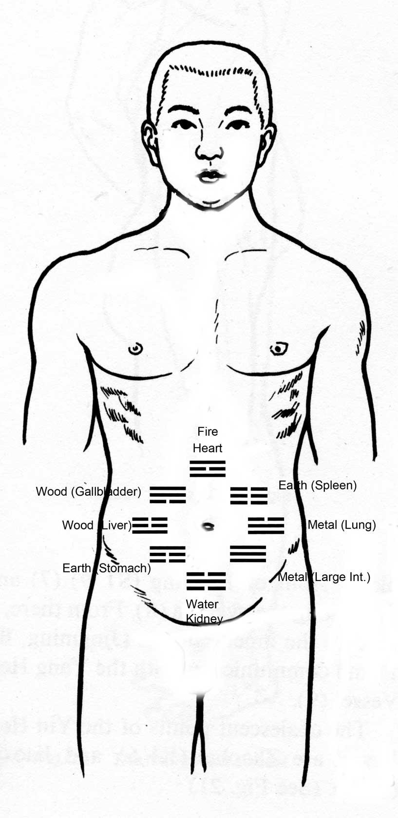 Ba Ga Abdominal Acupuncture Class