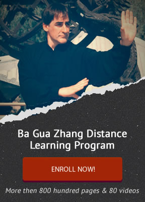 Authentic Ba Gua Zhang Distance Learning Program