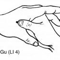 Image for 20 Acupuncture Points Every Martial Artist Should Know: Part 2