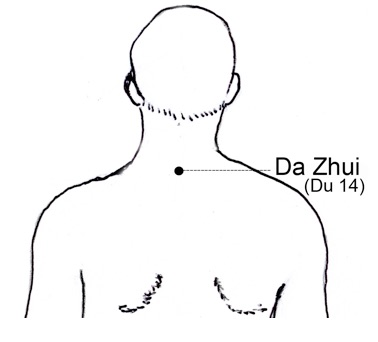 20 acupuncture points every martial artist should know part 1