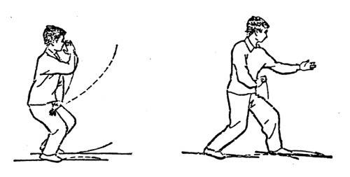 Xing Yi Snake