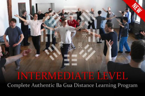 Distance-Learning-Ba-Gua-Intermediate.Web