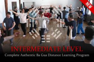 Distance-Learning-Ba-Gua-Intermediate.Web