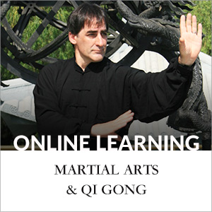 online-learning-martial