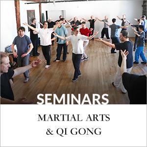 seminar-martial
