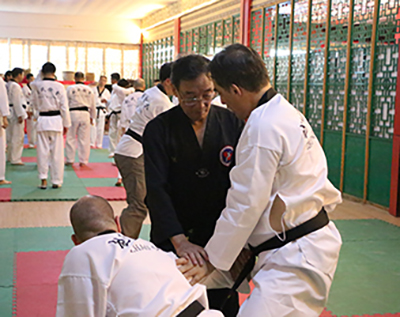 Hands-on Teaching Master Zhao Da Yuan