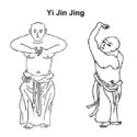 Image for Treating Overstretched Ligaments & Tendons with Chinese Medicine Part 3 By Tom Bisio