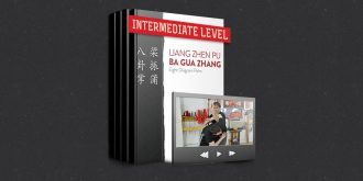 Authentic Ba Gua Online Learning Program: Intermediate Level – Core Patterns and Movements