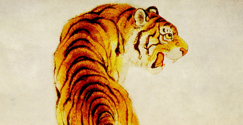 tiger-feat